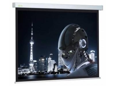 Экран 127X127CM CS-PSW-127X127 CACTUS