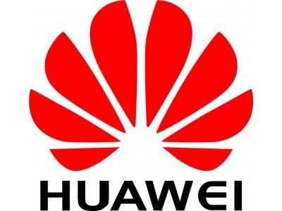 Аксессуар для ИБП CABLE POWER BLACK 5M IDSPWRCBL01 HUAWEI